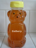 Gallberry Honey 12oz bottle - Save up to 40%