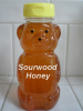 Pure Raw Sourwood Honey 12oz bottle - Save almost 30%